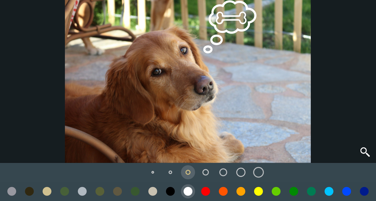 Amazing free photo editor for Android